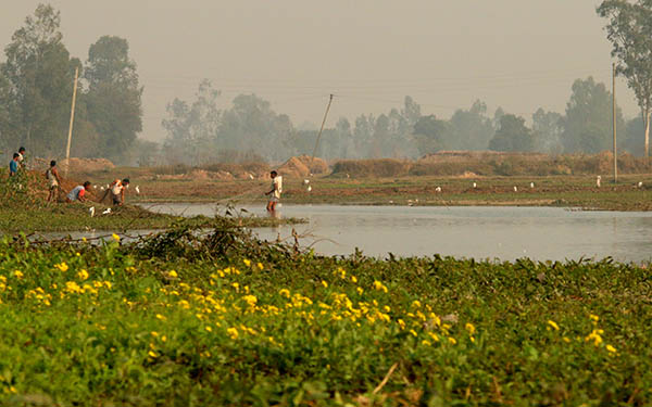 Illegal fishing in the wetland